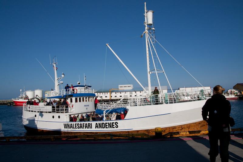 Skandinavien Tag 8 – Warten auf den Wal