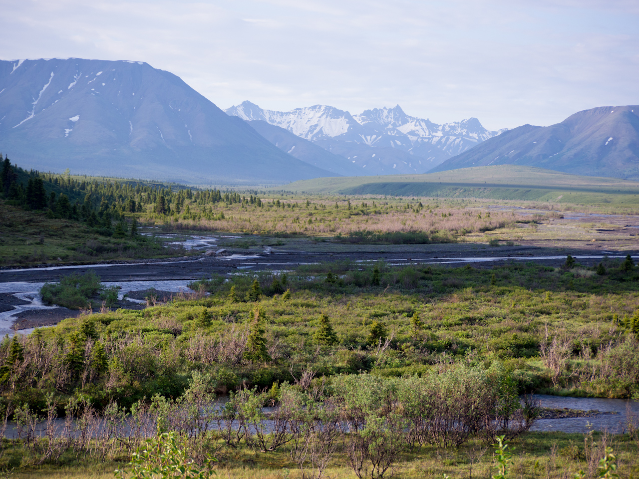 Alaska Tag 4 | Denali – Fairbanks