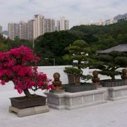 HongKong - 027