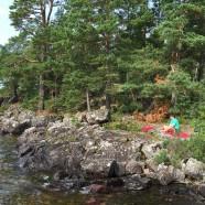 Schweden2105-242