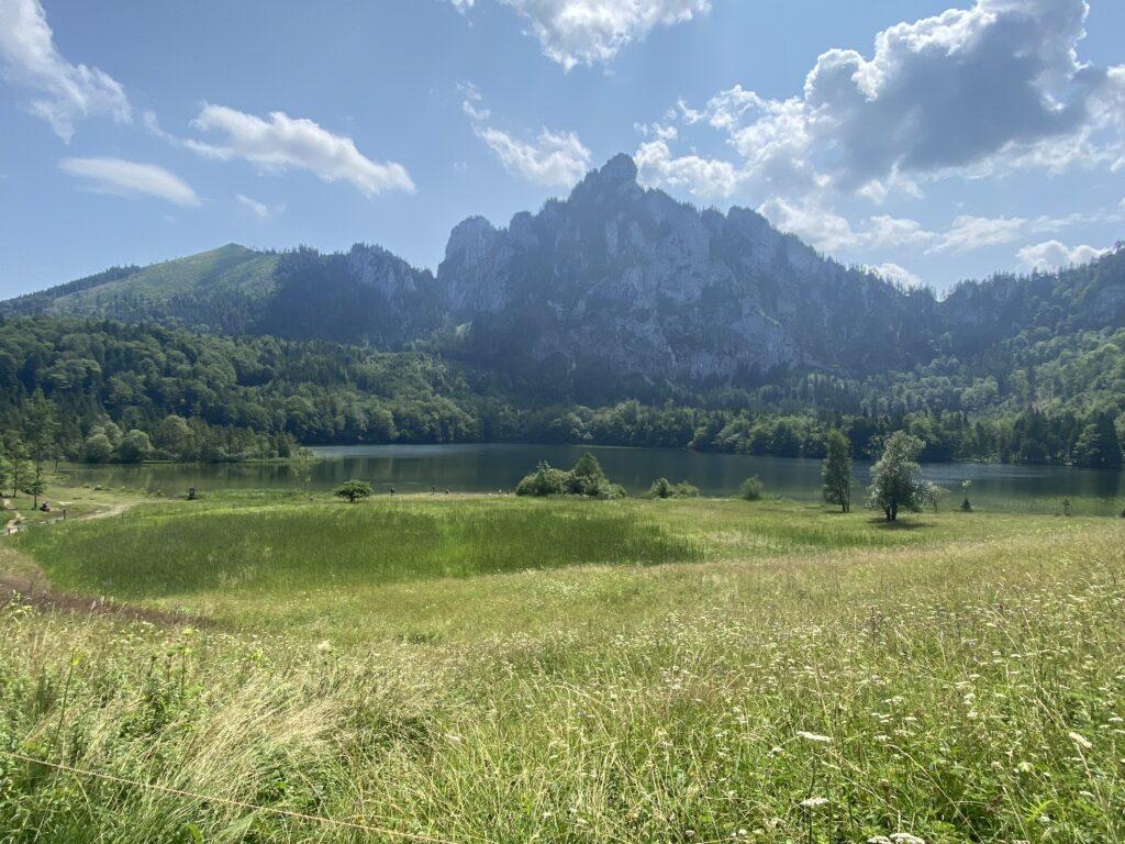 Grünberg  - Wanderung Laudachsee